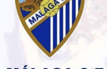 President of Málaga C.F Abdullah N Al Thani approves development of senior Futsal team