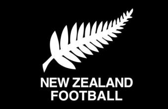 Interview with Matt Fejos assessing New Zealand's FIFA Futsal World Cup Bid