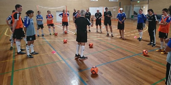 Functional and biochemical adaptations of elite level futsal players from Brazil along a training season